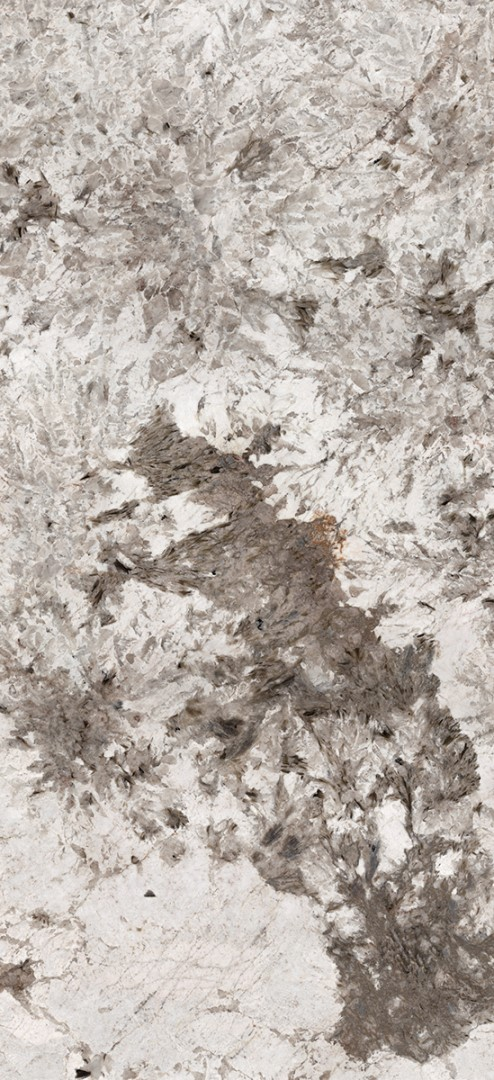 Obklad/dlažba Grey 119,3x300 cm, lesk